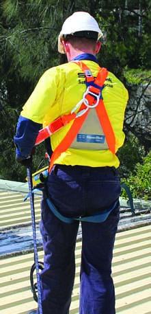 ERGO Lite Harnesses